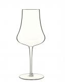 Bicchieri da Cocktail Calice Tentazioni Prosecco 42 cl 6pz